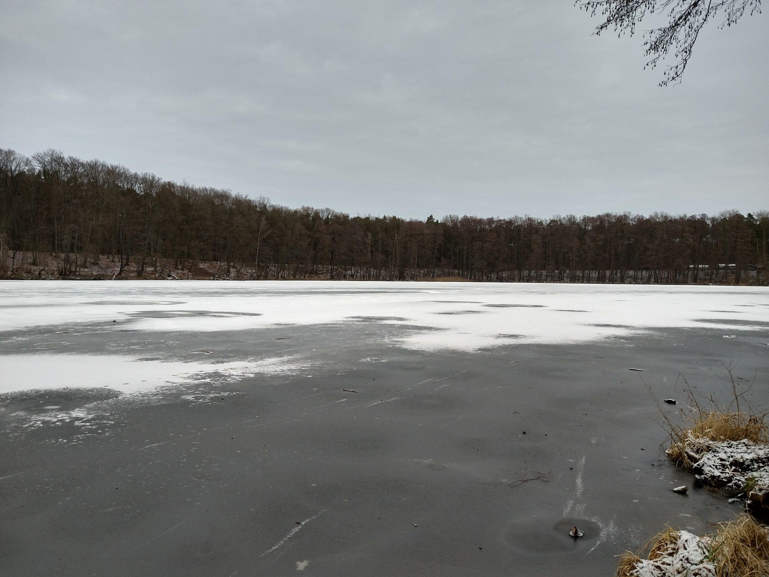 Möllensee Alt Buchhorst