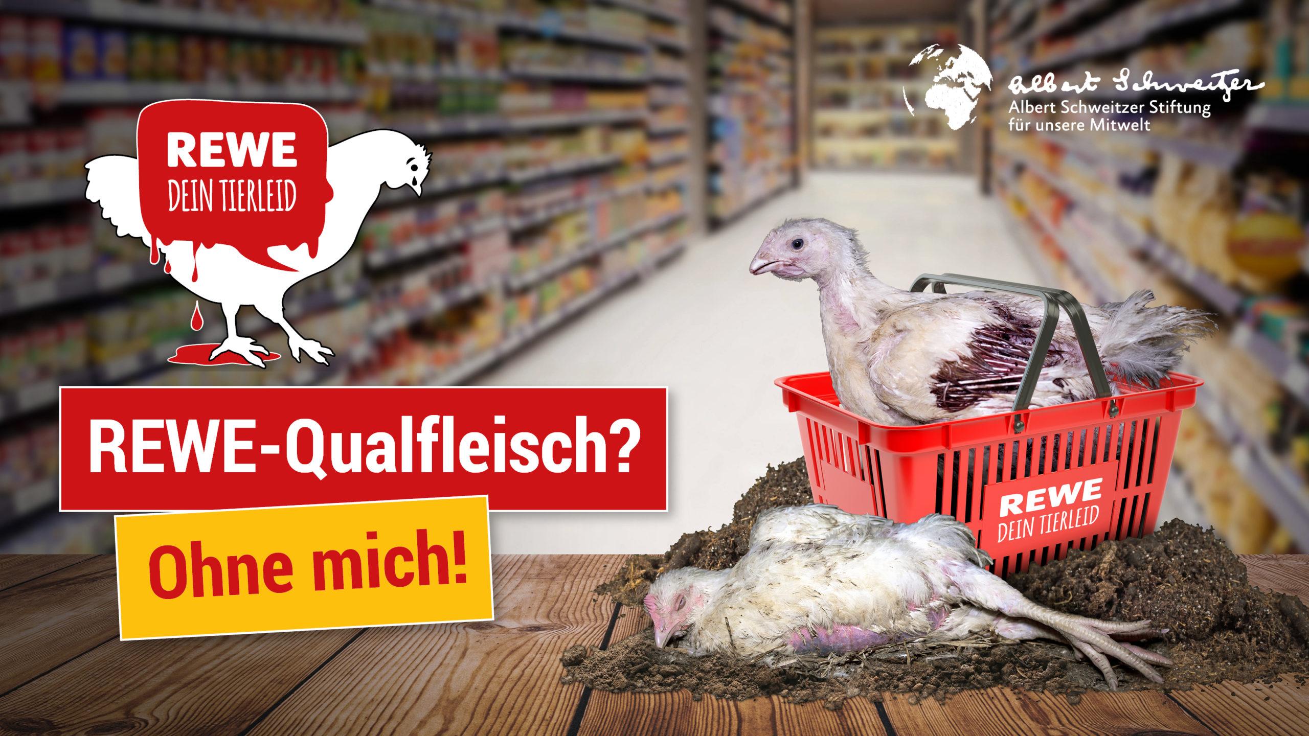ReWe Qualfleisch